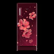 IceMagic Pro 245 L, 4 Star Direct Cool Refrigerator with Pedestal (Inverter Compressor)
